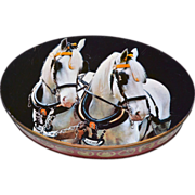 SALE Carrs of Carlisle England ~ Beautiful White Horse Photo on Oval Biscuit or Cookie Tin