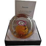 Selkirk Glass Paperweight 1980 Aurora Peter Holmes Signed Box Certificate 132/500