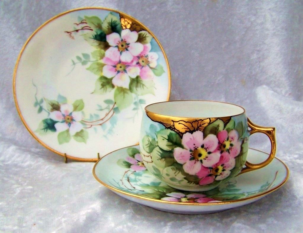 "Beautiful Bavaria 1900's Hand Painted ""Wild Roses"" Matching Cup,Saucer, & Plate by Listed Edward Donath Studio Artist, ""Myrtle Peplow"""