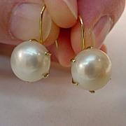 14K Gold 11.5mm Freshwater Pearl Pierced Earrings