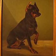 Antique Dog Portrait Painting Miniature Pinscher Oil on Board