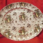 Johnson Brothers Vintage Autumn Delight Medium Platter