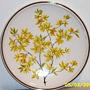 Summer Setting Large Cake Plate By Mikasa