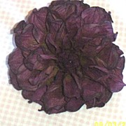 Large Wine Textured Cinkled Paper Hand Made Dahlia