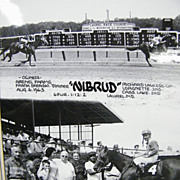 Laurel Race Track MD..Large B/W Glossy Photo Of Winner.. Nibrud..08/06/63