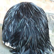 Vintage Black Feather Hat