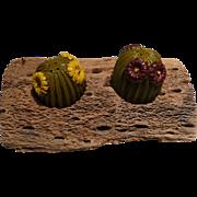 Cactus Salt & Pepper Set