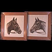 WALLACE Race Horse Prints - 'Pensive' & 'Shut Out'