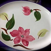 Stetson Rio Meadow Rose Oval Serving Platter