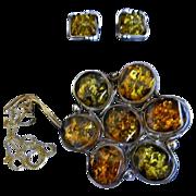 Vintage Sterling Two-Tone Amber Floral Brooch & Earring Set