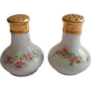 Antique Hand Painted China Salt Pepper Shakers Pink Green Gold Austria