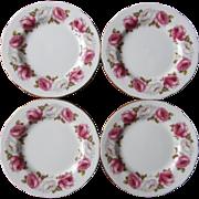 Princess Roses Queen Anne Plates Vintage Bone China 4 Tea