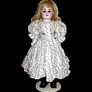"Pretty As a Picture Heinrich Handwerck 16"" Cabinet Doll"