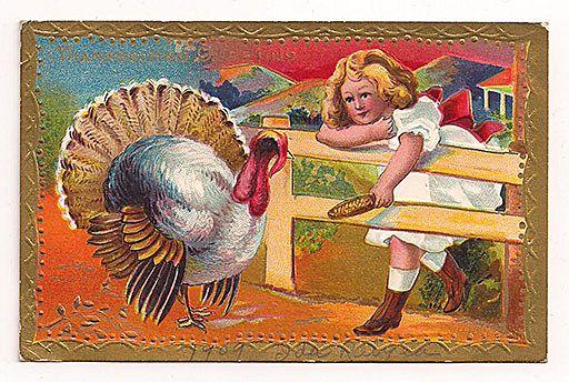 'Thanksgiving Greeting' Girl Feeds Turkey Corn Through the Fence Postcard 1909