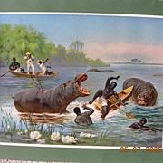 "Stunning Vintage Lithograph ""Hippopotamus Hunting"" Circa 1910"