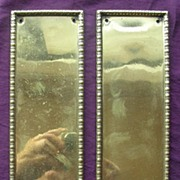 A Pair of Early Victorian Heavy Brass Door Push Plates