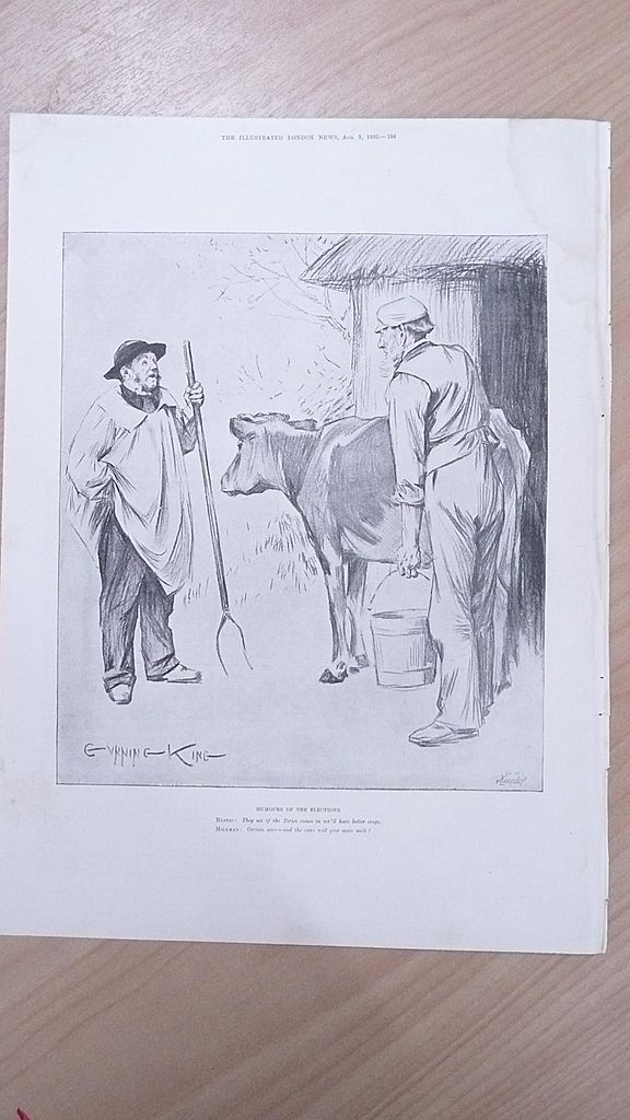 "Full Page Illustrated London News  1895 ""Humors of  The Elections"""