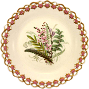 ROYAL WORCESTER c1869 Australian wild flowers antique plate #1