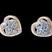 Blue Rhinestone Heart Screw Back Earrings