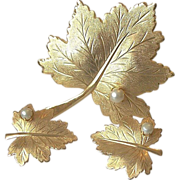 """Sarah Coventry 1968 """"Whispering Leaf""""  Pin Clip Earrings Set"""