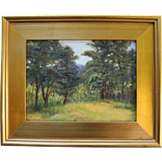 Landscape-Summer In Wellfleet, MA-Impressionistic Oil Painting-Framed 9 X 12