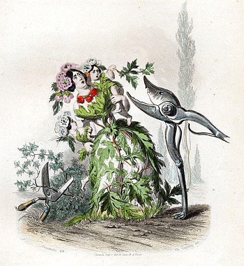 Grandville Victorian Engraving 'Aubepine' 1847 from Les Fleurs Animees.