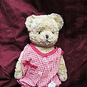 Sweet MidCentury Teddy Bear