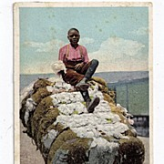 Early 1900s Real Life Black Americana Postcard #10542 Out On Bale