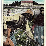 Black Americana Postcard Old Black Joe In De Land O' Cotton