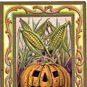 Unusual Thanksgiving Jack O Lantern Embossed Postcard