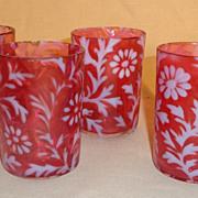 Cranberry & Opalescent  - Daisy &  Fern Pattern Tumbler