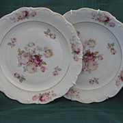 """A Pair of Schumann Arzberg Germany Rose Decorated 10"""" Plates"""