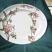 Early Vintage Platter Pink Roses   English George Jones and Son  1881  Pattern Briar