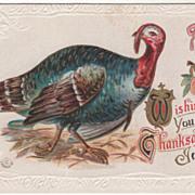 Turkey Hen Apple on Ribbon Vintage Thanksgiving Postcard