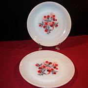 SET of 2: Fire King Primrose Salad (Luncheon) Plates