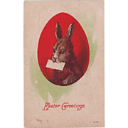 Antique Easter Postcard Rabbit Messenger