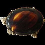 Glass turtle-Pin