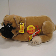 Steiff's Lying Boxer Collector's Edition With IDs