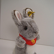 Steiff's Adorable Timmy Rabbit With All IDs