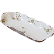 Antique Limoges Long Narrow Porcelain Dish. French C.1890.