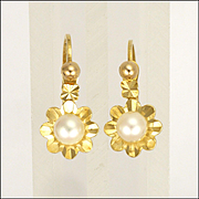 French 18K Cultured Pearl Lever Arch Backs -Pierced Ears
