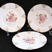 "20% OFF Vintage (3) Z.S. & Co 7 1/2"" Bavaria Porcelain Salad Plates 1880-1910 Mint Unused Condition"