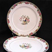"SALE Vintage Collectible (2) Pope Gosser 10"" Dinner Plates Pattern POP 214 1920s Mint Unu"