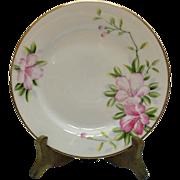 Vintage Hand Painted Nippon 5 Salad Plates Azalea Pattern #19322 Very Good Condition