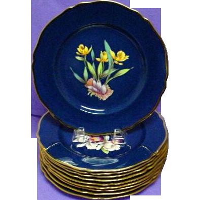 Antique Spode Orchid Plate Cattleya Citrina (#7)
