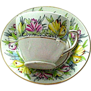 Rosina England Tulip Decorated Cup and Saucer Set