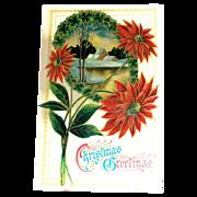 """Christmas Greetings"" Poinsettias & Winter Scene Postcard"