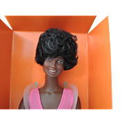 Kenner Black Skye Doll In Original Box with Booklet