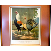 "Awesome Print of Mr. John Douglas's Duckwing Game Fowls ""Sir Harry"" and ""Lady"" by J. W. Ludlow 1873"