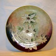 Awesome Austrian Porcelain Cabinet Plate~ Hand Painted with White Poinsettias ~ ALTROHLAU PORCELAIN FACTORIES - MORITZ ZDEKAUER Austria 1884-1909